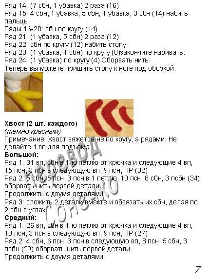 golosistyi-petushok-8