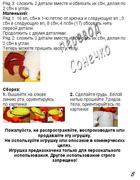golosistyi-petushok-9