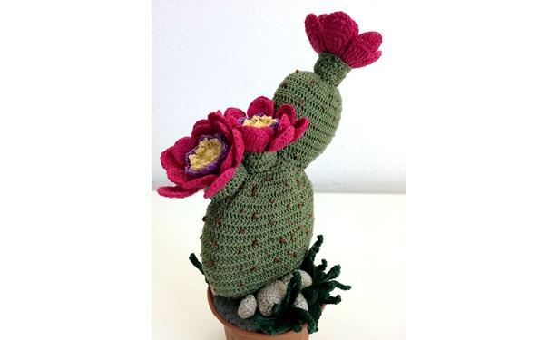 Вязаный крючком цветок Опунция. Схема