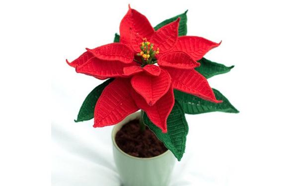 Вязаный крючкомРождественский цветок. Схема